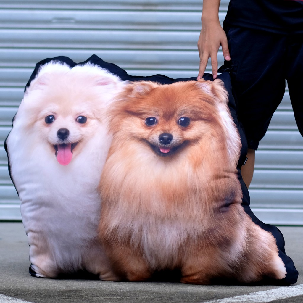 Giant Pet Pillow